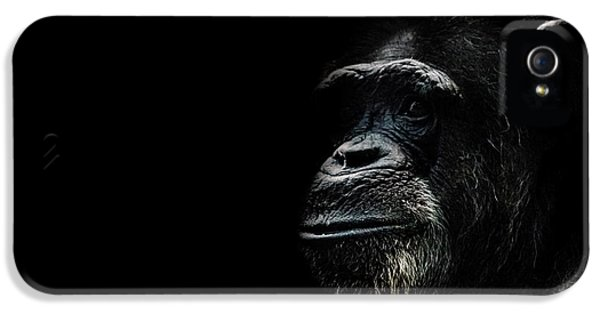 The Wise IPhone 5 / 5s Case by Martin Newman