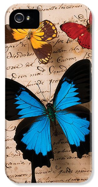 Communication iPhone 5 Cases - Three butterflies iPhone 5 Case by Garry Gay