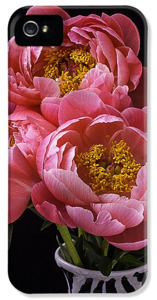 Three iPhone 5 Cases - Three Peonys iPhone 5 Case by Garry Gay
