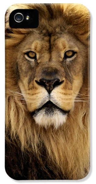 Face iPhone 5 Cases - Thy Kingdom Come iPhone 5 Case by Linda Mishler
