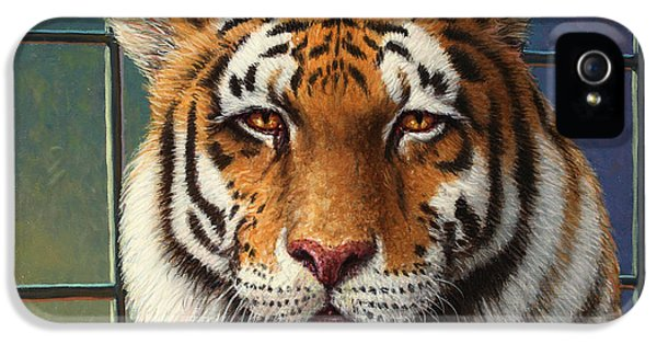 Zoo iPhone 5 Cases - Tiger in Trouble iPhone 5 Case by James W Johnson