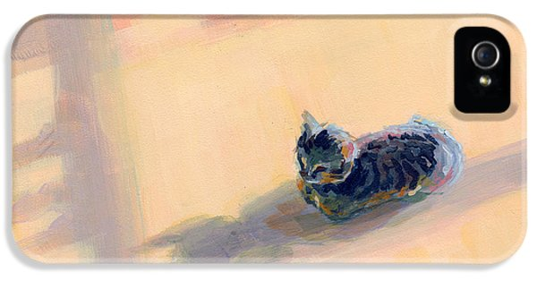 Gray iPhone 5 Cases - Tiny Kitten Big Dreams iPhone 5 Case by Kimberly Santini