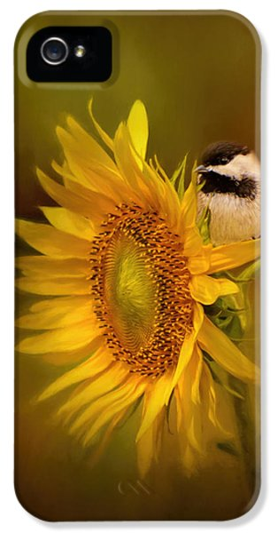 Tiny Surprise Bird Art IPhone 5 / 5s Case by Jai Johnson