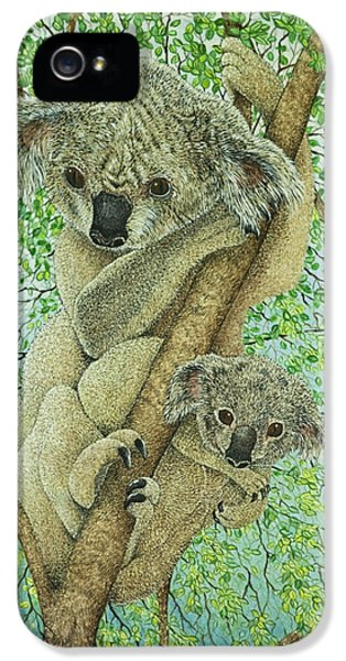 Top Of The Tree IPhone 5 / 5s Case by Pat Scott