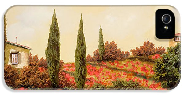 Poppy iPhone 5 Cases - Tre Case Tra I Papaveri iPhone 5 Case by Guido Borelli