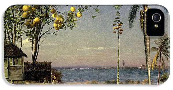 Tropical Scene IPhone 5 / 5s Case by Albert Bierstadt