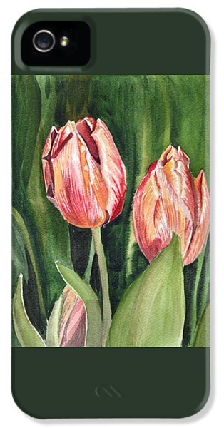 Tulips iPhone 5 Cases - Tulips  iPhone 5 Case by Irina Sztukowski