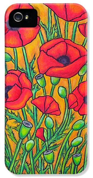 Greet iPhone 5 Cases - Tuscan Poppies - Crop 2 iPhone 5 Case by Lisa  Lorenz