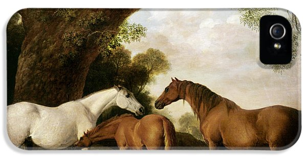Two Mares And A Foal IPhone 5 / 5s Case by George Stubbs