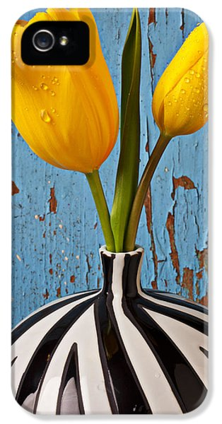 Tulips iPhone 5 Cases - Two Yellow Tulips iPhone 5 Case by Garry Gay