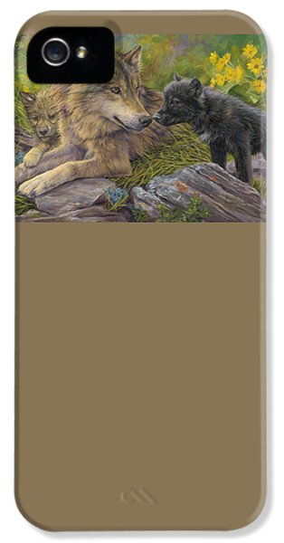 Unconditional Love IPhone 5 / 5s Case by Lucie Bilodeau