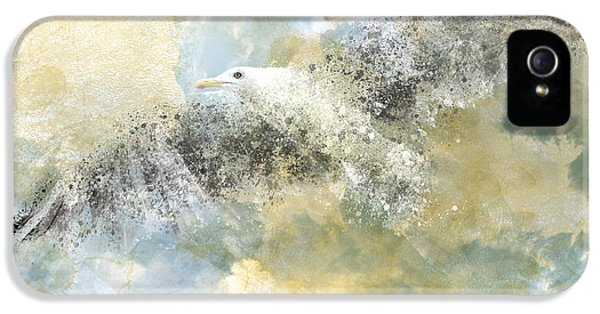 Beak iPhone 5 Cases - Vanishing Seagull iPhone 5 Case by Melanie Viola