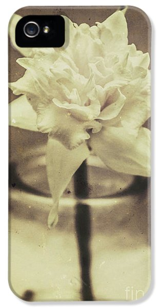Vintage Floral Still Life Of A Pure White Bloom IPhone 5 / 5s Case by Jorgo Photography - Wall Art Gallery