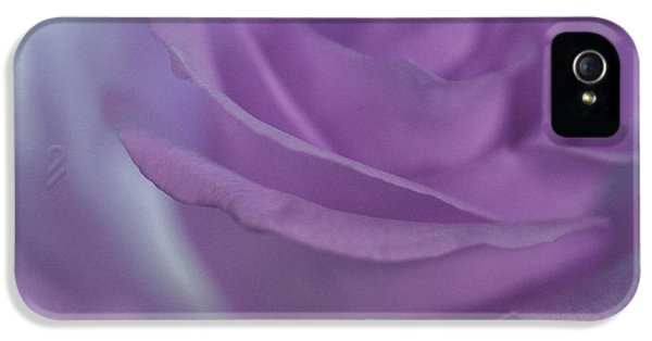 Roses iPhone 5 Cases - Violet Rose iPhone 5 Case by  The Art Of Marilyn Ridoutt-Greene