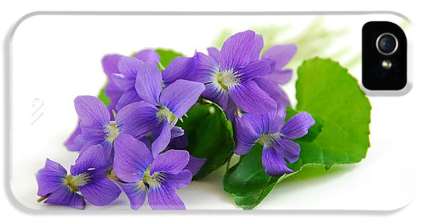 Tender iPhone 5 Cases - Violets on white background iPhone 5 Case by Elena Elisseeva