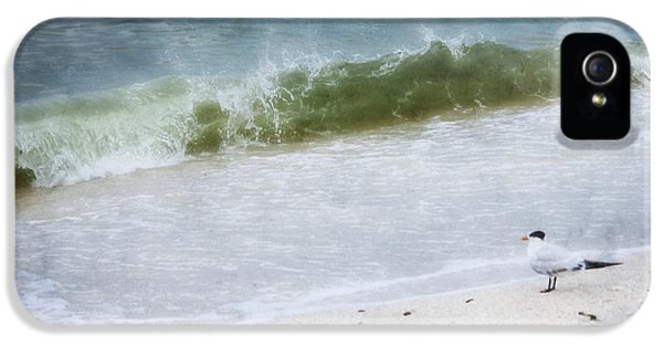 Watching Waves Crest And Break IPhone 5 / 5s Case by Barbara Chichester