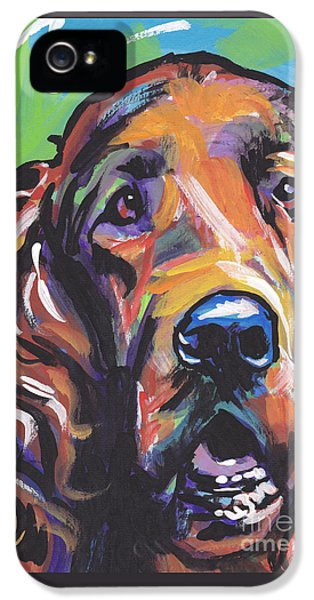 Irish iPhone 5 Cases - When Irish Eyes Are Smiling iPhone 5 Case by Lea