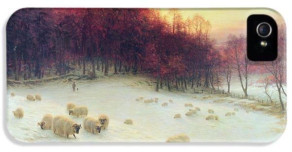 Meadow iPhone 5 Cases - When the West with Evening Glows iPhone 5 Case by Joseph Farquharson