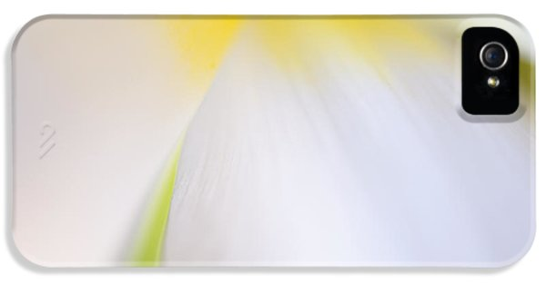 White Tulip Detail IPhone 5 / 5s Case by Silke Magino