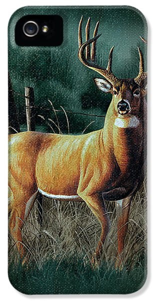 Hunting iPhone 5 Cases - Whitetail Deer iPhone 5 Case by JQ Licensing