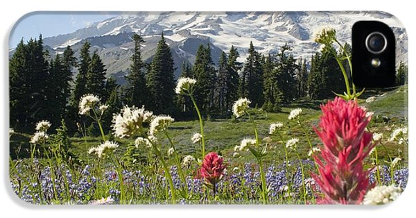 Wildflowers In Mount Rainier National IPhone 5 / 5s Case by Dan Sherwood