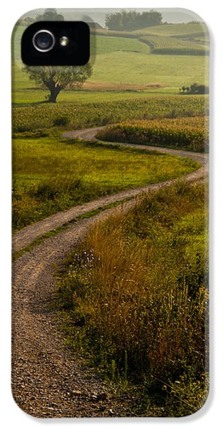 Field iPhone 5 Cases - Willow iPhone 5 Case by Davorin Mance