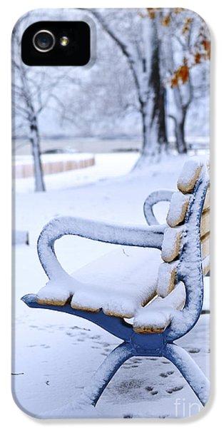 December iPhone 5 Cases - Winter bench iPhone 5 Case by Elena Elisseeva