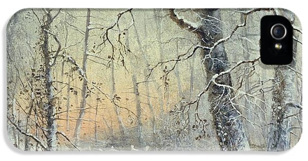 Winter Breakfast IPhone 5 / 5s Case by Joseph Farquharson