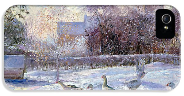 Winter Geese In Church Meadow IPhone 5 / 5s Case by Timothy Easton