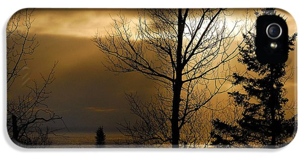 Lake Michigan iPhone 5 Cases - Winter Sunrise 1 iPhone 5 Case by Sebastian Musial