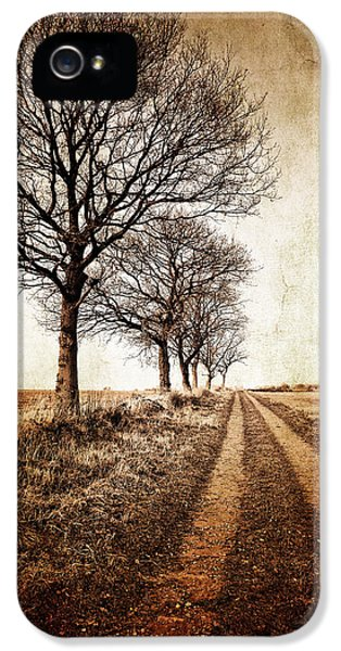 Aged iPhone 5 Cases - Winter Track With Trees iPhone 5 Case by Meirion Matthias