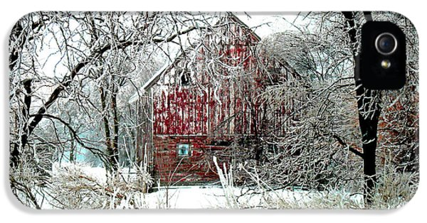 Winter Wonderland IPhone 5 / 5s Case by Julie Hamilton