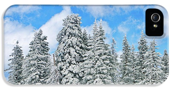 Snow iPhone 5 Cases - Winterscape iPhone 5 Case by Jeff Kolker