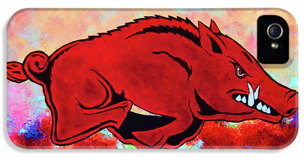 Woo Pig Sooie 3 IPhone 5 / 5s Case by Belinda Nagy