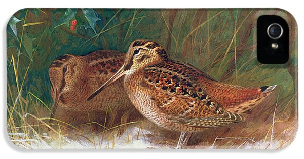 Woodcock In The Undergrowth IPhone 5 / 5s Case by Archibald Thorburn