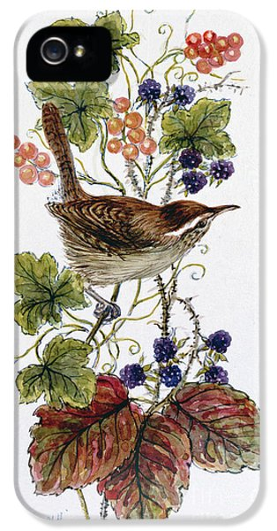 Wren On A Spray Of Berries IPhone 5 / 5s Case by Nell Hill