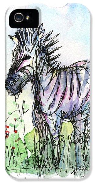 Zebra Painting Watercolor Sketch IPhone 5 / 5s Case by Olga Shvartsur