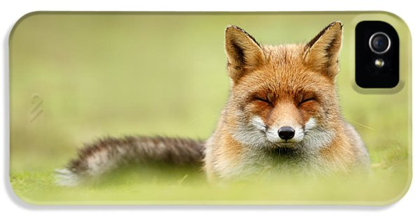 Zen Fox Series - Zen Fox In A Sea Of Green IPhone 5 / 5s Case by Roeselien Raimond