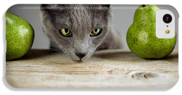 Cat And Pears IPhone 5c Case by Nailia Schwarz