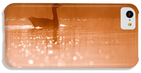Early Morning Magic IPhone 5c Case by Roeselien Raimond
