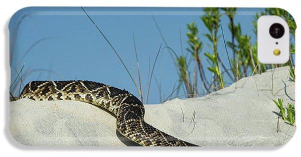 Eastern Diamondback Rattlesnake IPhone 5c Case by Pete Oxford
