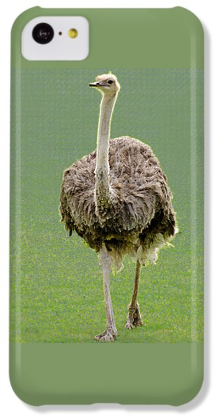 Emu IPhone 5c Case by Ellen Henneke