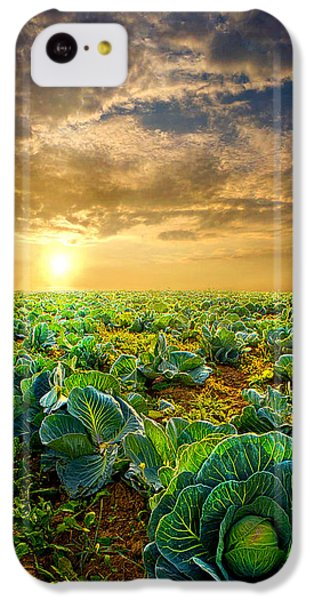 Fall Harvest IPhone 5c Case by Phil Koch
