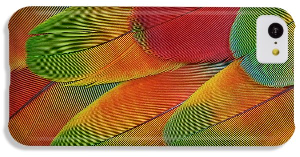 Harlequin Macaw Wing Feather Design IPhone 5c Case by Darrell Gulin