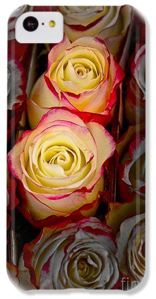 Love Is A Rose IPhone 5c Case by Al Bourassa