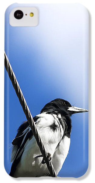 Magpie Up High IPhone 5c Case by Jorgo Photography - Wall Art Gallery