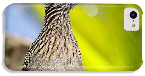 The Roadrunner  IPhone 5c Case by Saija  Lehtonen