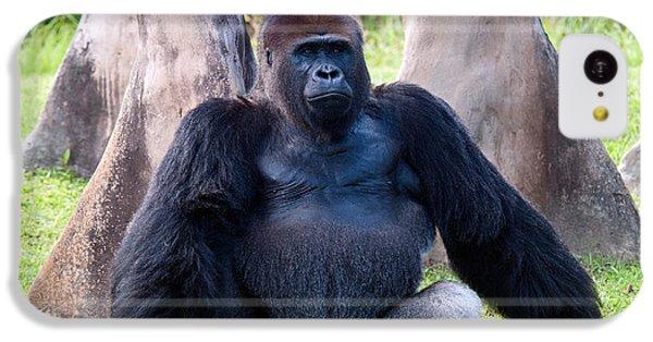 Western Lowland Gorilla IPhone 5c Case by Mark Newman