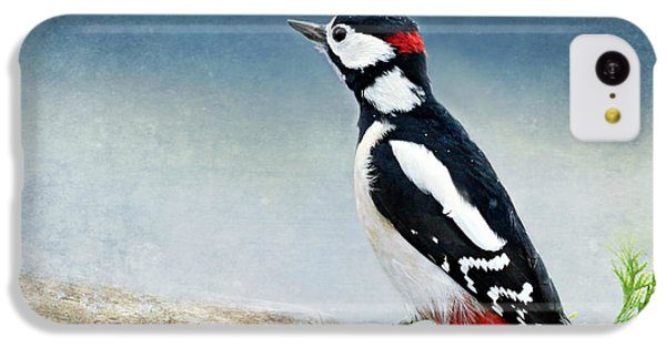 Woodpecker IPhone 5c Case by Heike Hultsch