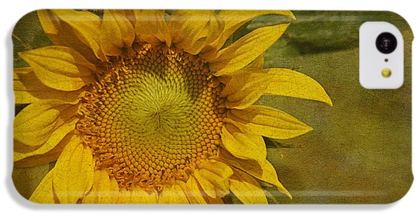 Sunflower IPhone 5c Case by Cindi Ressler